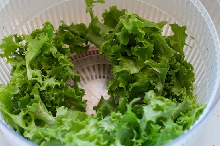 mejor-centrifugadora-de-ensaladas
