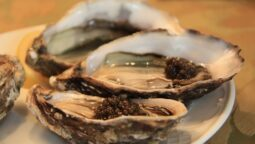 Donde-comprar-ostras-Francesas