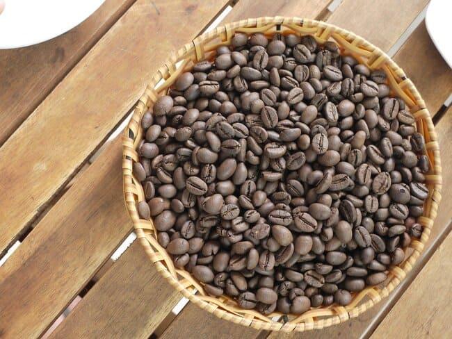 Que-es-el-cafe-robusta