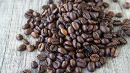 diferencias-entre-el-cafe-arabica-y-el-cafe-robusta